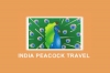 India Peacock Travel
