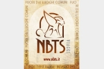NBTS Viaggi Tour Operator